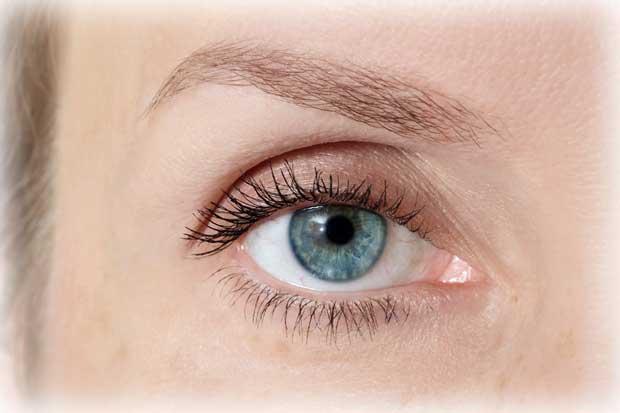 پلک Eyelid