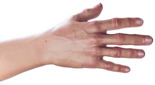 پنجه hand