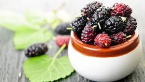 توت Mulberry