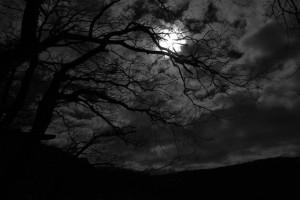 تاریکی dark