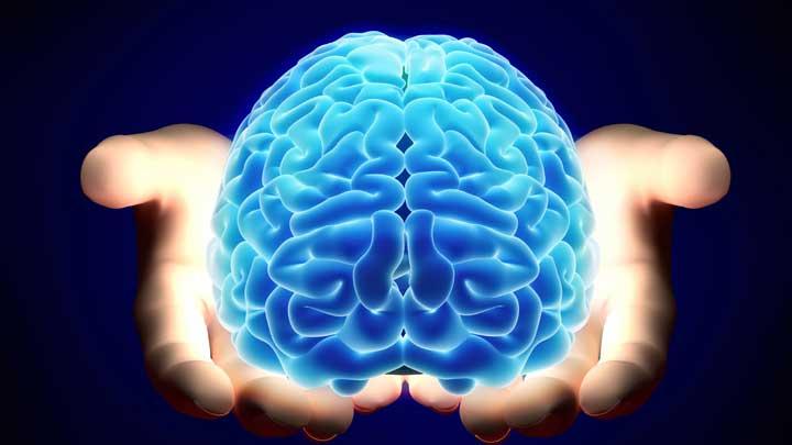 درباره مغز brain-transplant