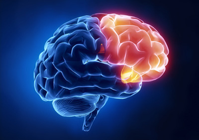 روشی واسه قوی کردن مغز !