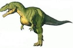 کشف تخم دایناسورهای 60 میلیون ساله +تصاویر