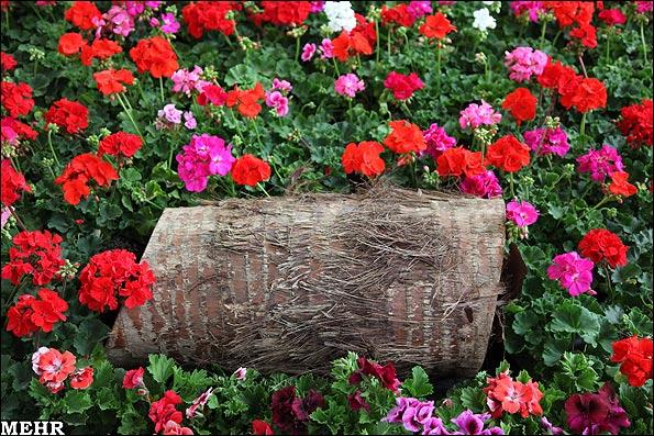 نمایشگاه بین المللی گل و گیاه تهران
