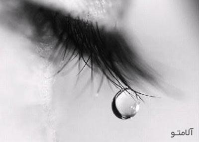 خواص گریه