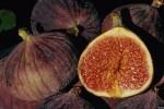 خواص 4 میوه اعجاب انگیز تابستانی