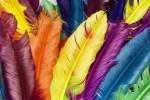رنگ عشق برای مردان چیست؟