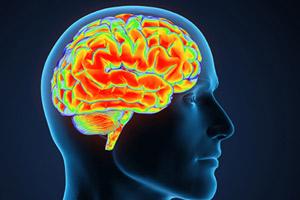 راه های تقویت ذهن و حافظه