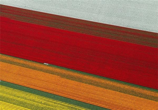 مزارع زیبا