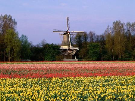 زیباترین و پر بازدیدترین پارک دنیا کجاست + عکس