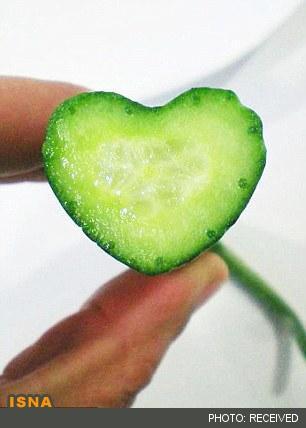 تولید خیارهای جالب قلبی شکل / قلب
