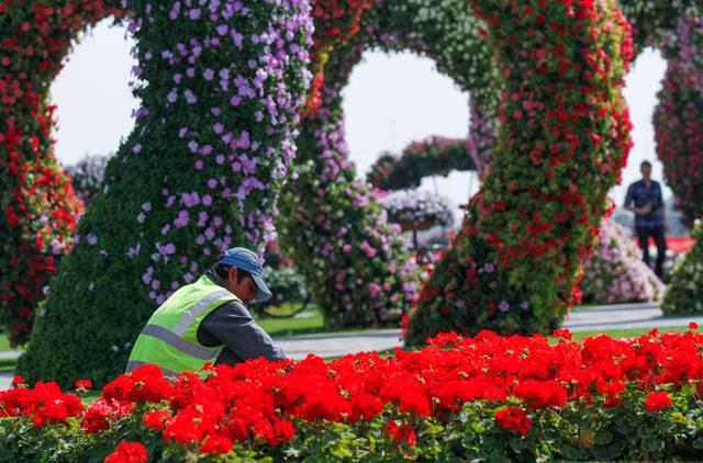 تصاویری از زیبایی هایی که انسان با گل و درخت خلق کرده است