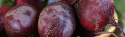 beets,برای کاهش فشار خون چه بخوریم