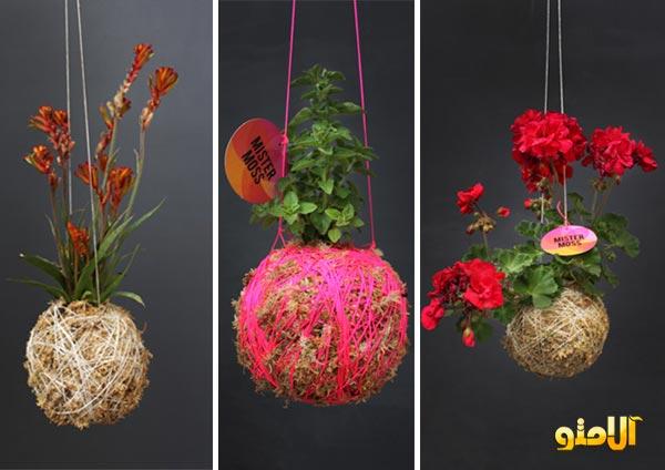 گلدان های زیبا