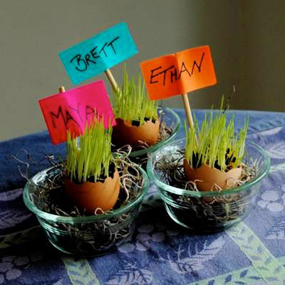 سبزه تخم مرغی , آموزش تصویری انداختن سبزه