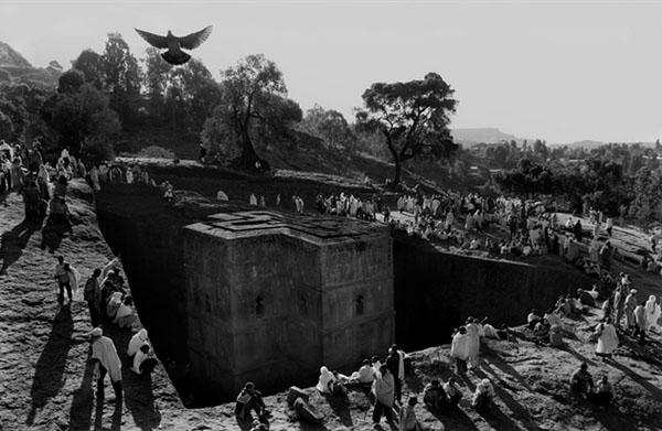 برندگان جایزه عکاسی سونی