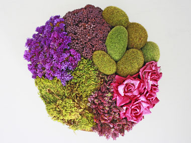 how-to-dry-flowers-salemzi