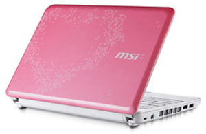 لپ تاپ واسه خانوما MSI