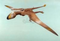 عجیبترین دایناسورهای باستان +عکس