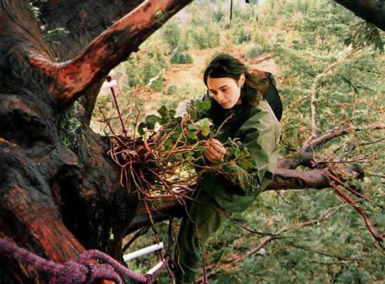 دختری که دوسال روی درخت زندگی می کند + عکس