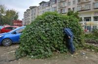 خودروی زامبیها در چین!/ عکس