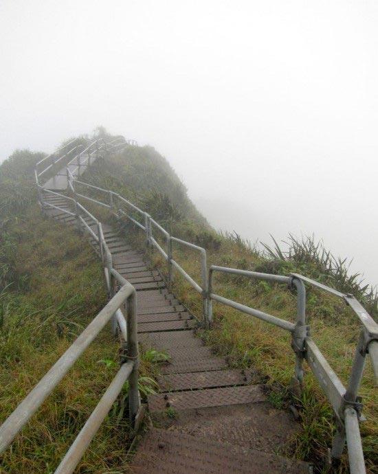 شگفت انگیزترین پله دنیا +عکس