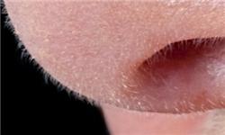 دلیل بزرگ تر بودن بینی مردها نسبت به زنان