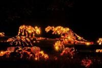 دایناسورهای کدو حلوایی + عکس