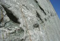 دیوار سنگی که بیش از 5 هزار رد پای دایناسورها روی آن است + عکس