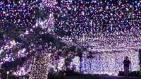 عظیم ترین چراغانی کریسمس + عکس