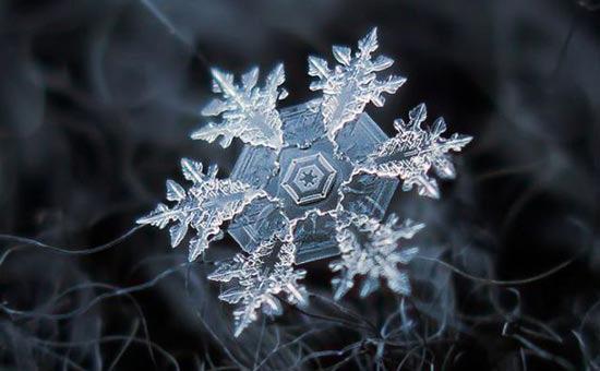 عکس های زیبا از دانه های برف