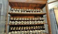 موزههای عجیب و ترسناک + عکس