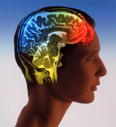 کمبود ویتامین B12 خون باعث کوچک تر شدن حجم مغز