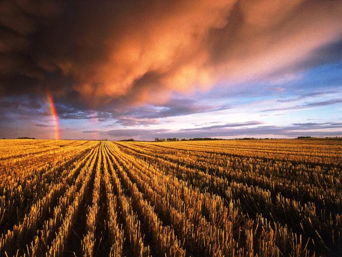 Rainbow 007 عکس های رنگین کمان های زیبا