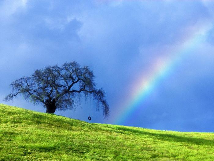 Rainbow 008 عکس های رنگین کمان های زیبا