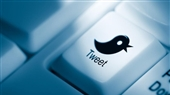 شباهت میان مغز و توئیتر چیست؟