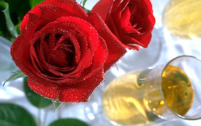 07 عکس های تزئینات فانتزی و زیبا با گل رز
