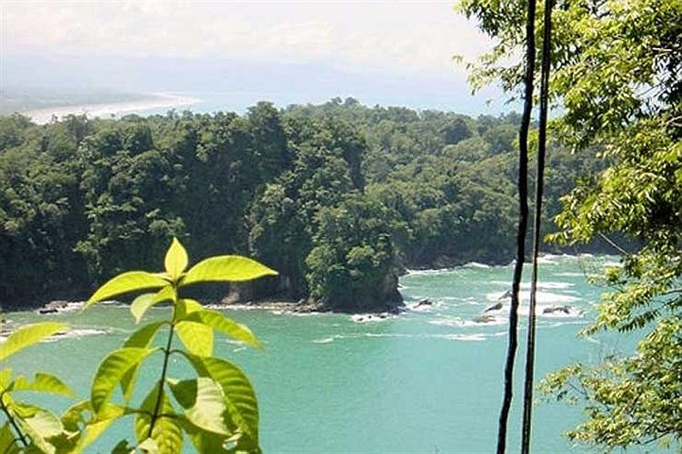 منظره ساحل كوئپوس در كاستاریكا.