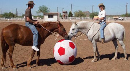 فوتبال با اسب