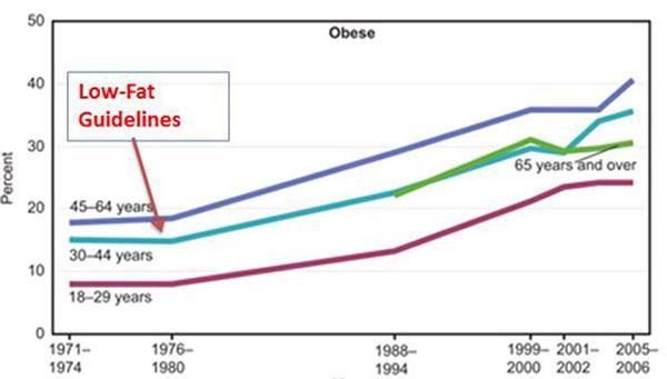 تحقیق در مورد رژیم غذایی,diet-charts10