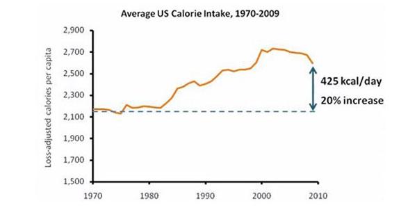 تحقیق در مورد رژیم غذایی,diet-charts3
