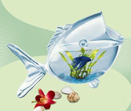 39946035853128336879 تزئین تنگ ماهی خاص سفره هفت سین