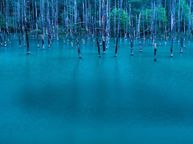 Blue-Pond-in-Hokkaido
