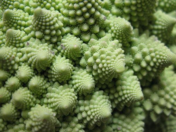 Romanesco-broccoli