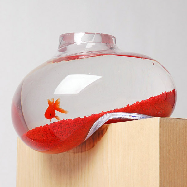 bubble-tank-fish-bowl-1