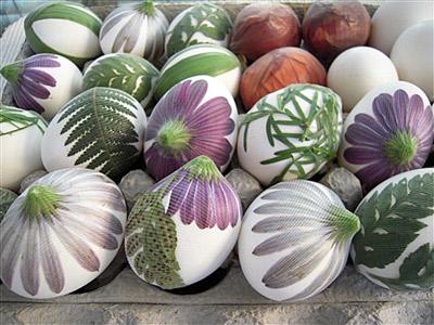 تخم مرغ رنگی عید 8