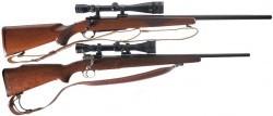 آشنایی با انواع تفنگهای شکاری + عکس