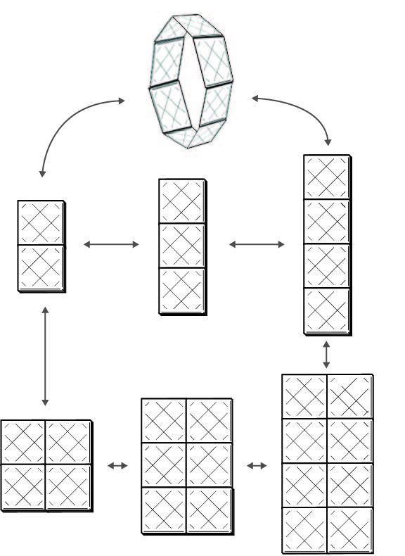 paddleGraph