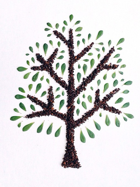 Coffee Beans Art هنرنمایی با قهوه