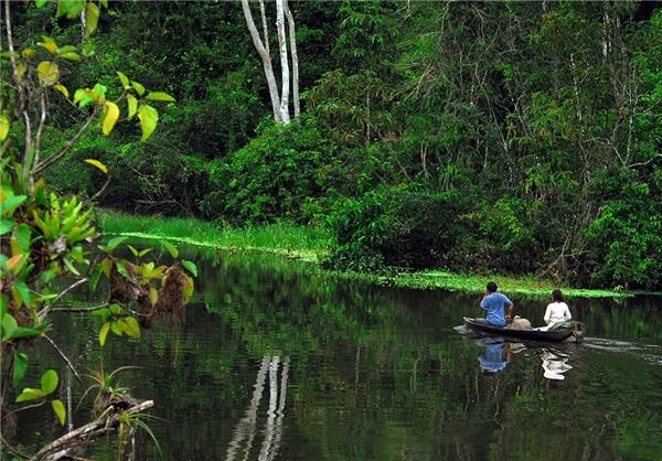 هتل 5 ستاره بر روی آبهای آمازون